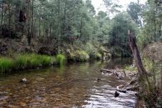 Creek on the way into Wonnangatta