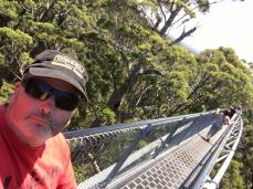 29 Tree top suspension bridge