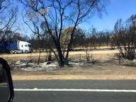 36 Bushfire damage
