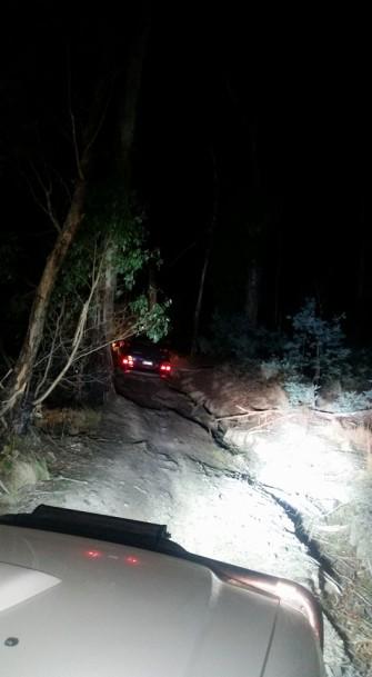 Cobaw Night Drive 2