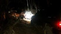Cobaw Night Drive 3