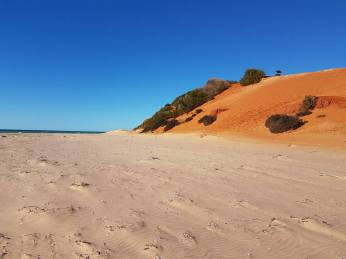 red-sand-meets-the-white