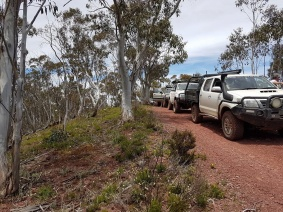 classic-high-country-gums