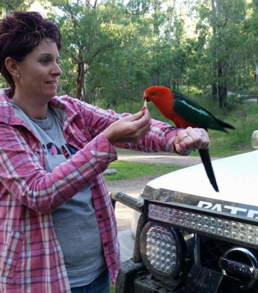 jade-and-king-parrot